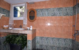 Seahorse - Bathroom